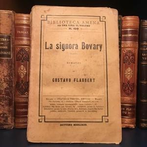 """Madame Bovary"" (Fratelli Treves, 1881)"
