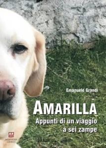 """""""Amarilla. Appunti di viaggio a sei zampe"""" di Emanuele Grandi (Morphema Editrice, 2018)"""