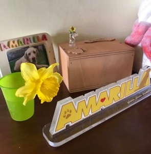 Il ricordo vivo di Amarilla (Per gentile concessione di Emanuele Grandi)